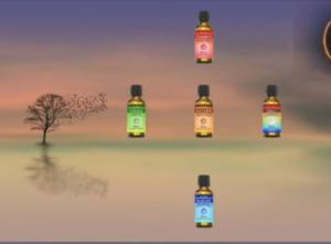 5-elements-season-essential-oils